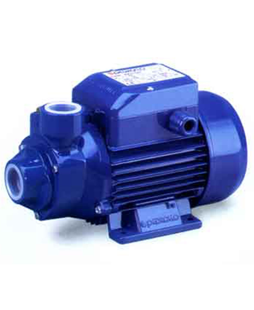 Pumps with peripheral impeller